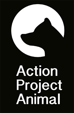 Action Project Animal